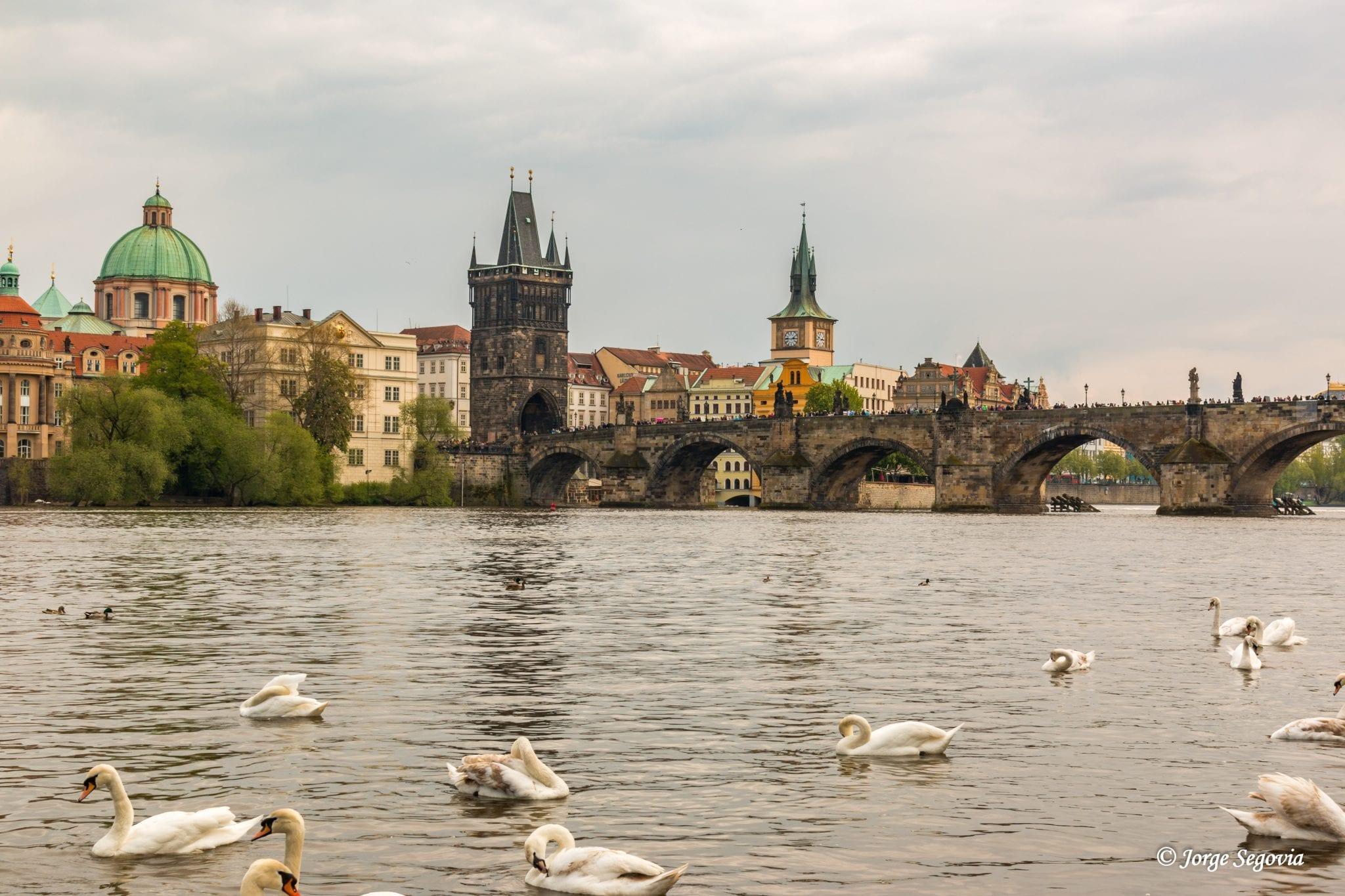 El puente Carlos desde el río Moldava